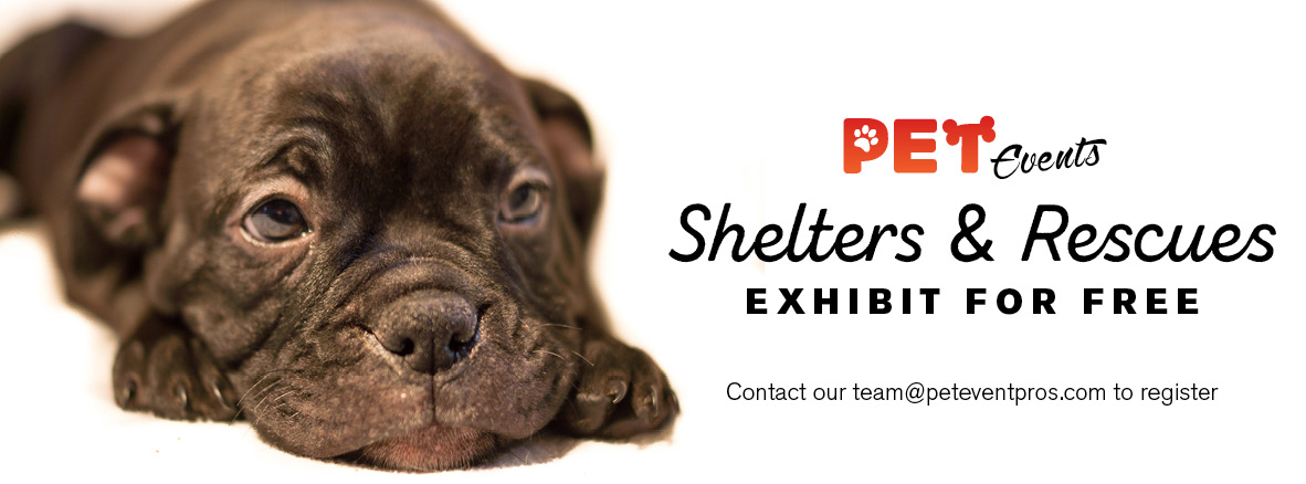 Rescues and Shelters exhibit free3