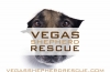 Vegas Shepherd Rescue